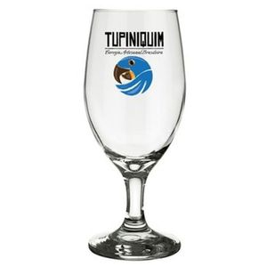 Taca-cerveja-artesanal-Tupiniquim-330ml-1