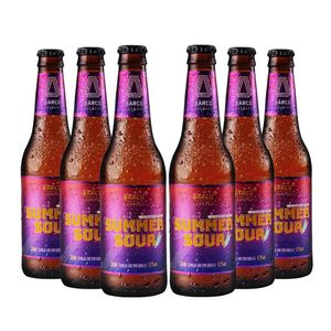 Pack-6-Cervejas-Barco-Summer-Sour-355ml-1